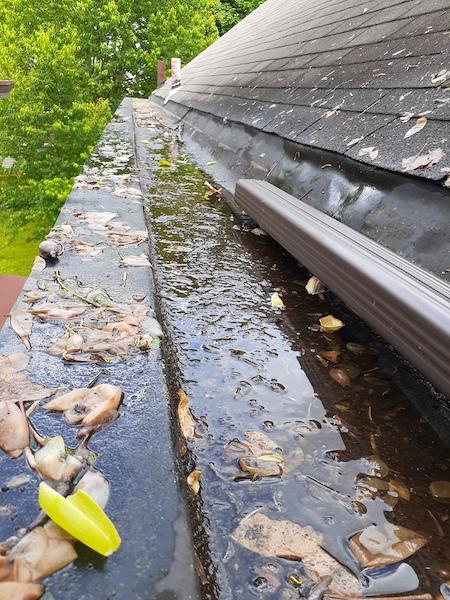 clogged box gutter at Cincinnati home